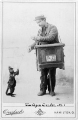 Organ_grinder_with_monkey
